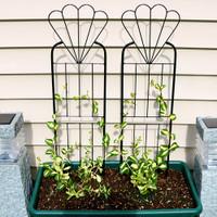 Sunnydaze 32 Inch Flower Design Garden Trellis, Set of 2