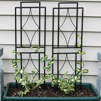 Sunnydaze 30 Inch Contemporary Garden Trellis, Set of 2