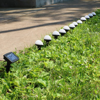 Sunnydaze White Solar LED Landscape Path Lights, 12 Lights, 146-Inch Long