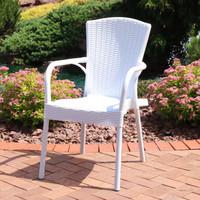 Sunnydaze Segesta Plastic Outdoor Dining Chair