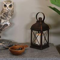 Setauket Indoor Decorative LED Candle Lantern, Single