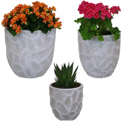 3-Piece Set with Plants Light Gray