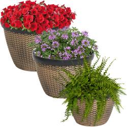 Sunnydaze Resin Faux Basketweave Outdoor Planters - Set of 3