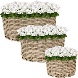 Sunnydaze Round Indoor Beige Polyrattan Basket Planters - Set of 3