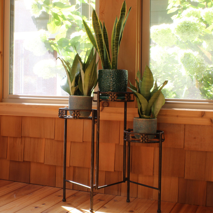 3-Tier Plant Stand Indoors