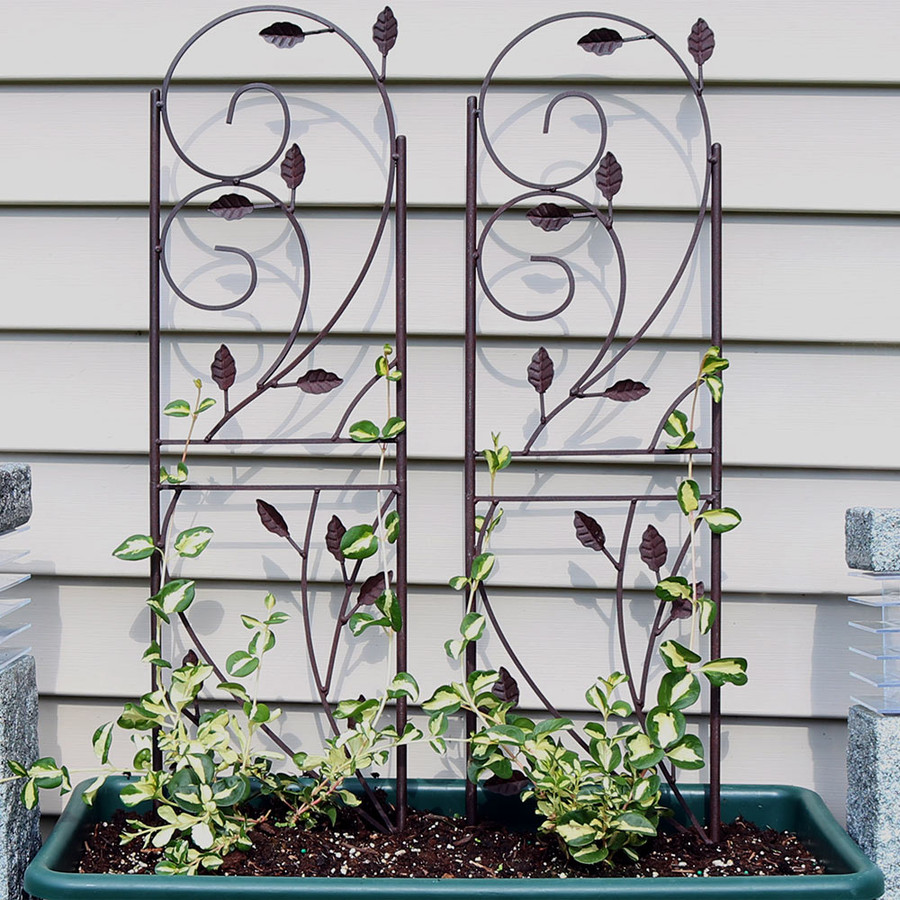Sunnydaze 32 Inch Rustic Plant Design Garden Trellis, Set of 2
