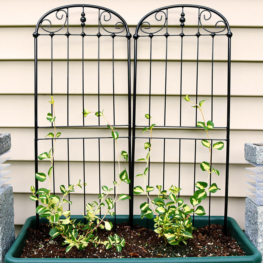 Sunnydaze 32 Inch Traditional Garden Trellis, Set of 2