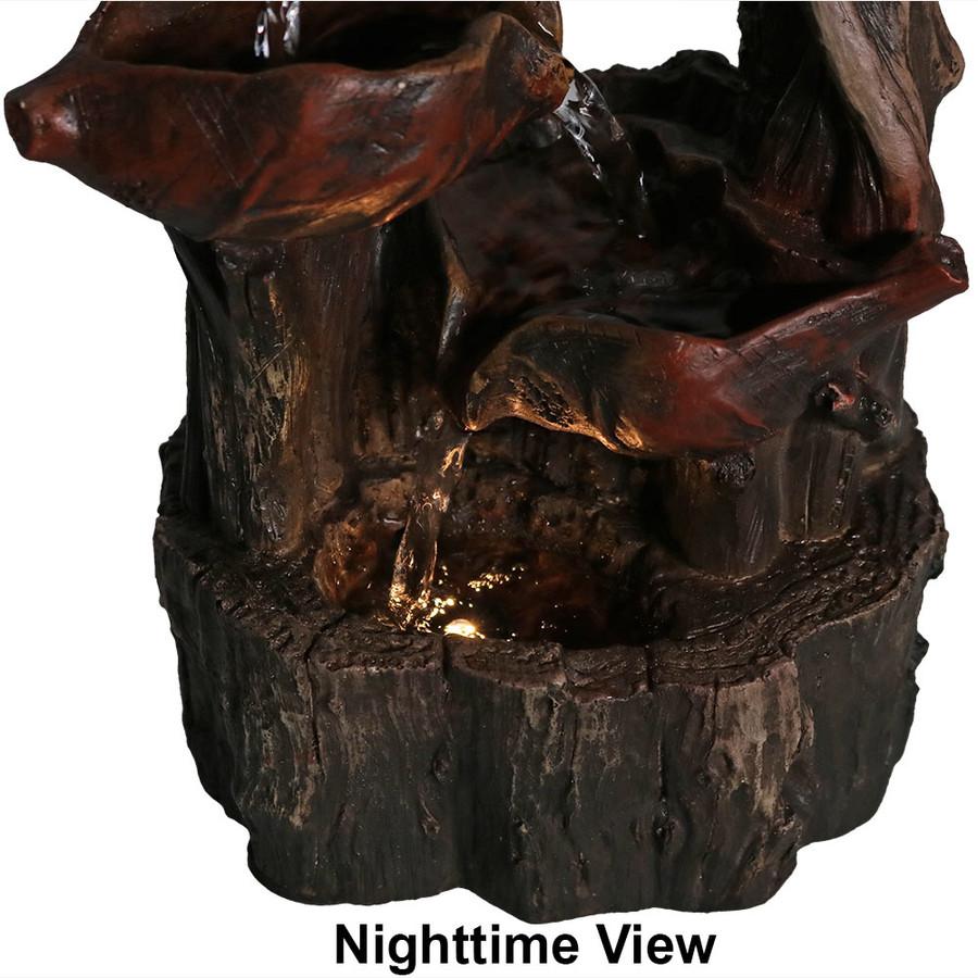 Nighttime Bottom View