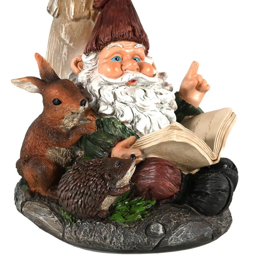 Closeup of Gnome