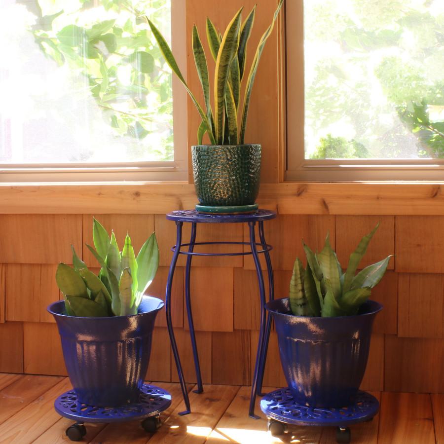 Dark Blue Indoors