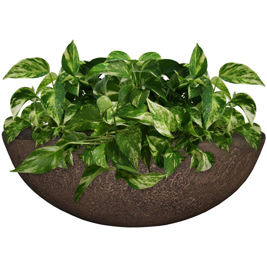 Percival Indoor/Outdoor Planter, Single
