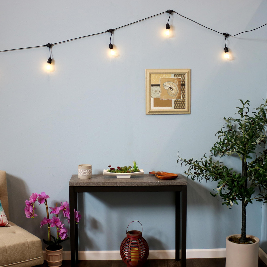 Indoor/Outdoor LED String Lights with 20 Oblong Edison Bulbs, Shown Indoors