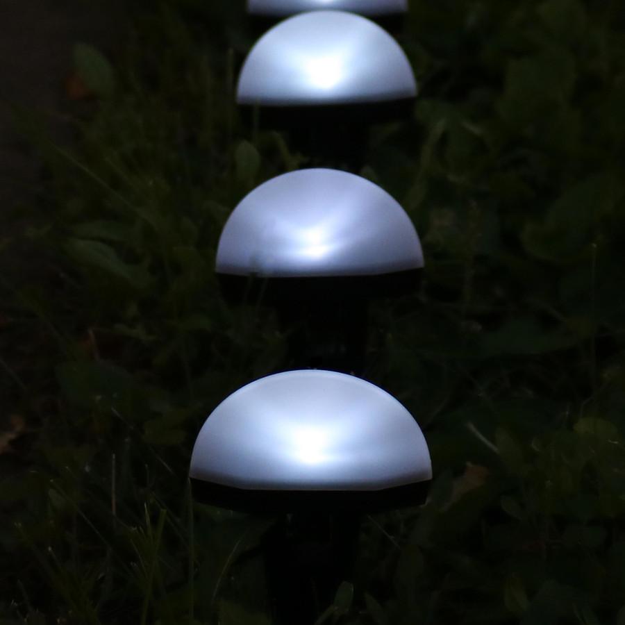 White Solar LED Landscape Path Lights, Nighttime