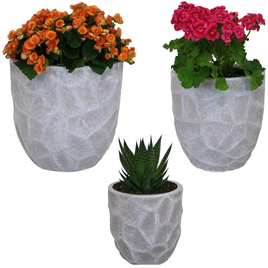 3-Piece Set with Plants Light Gray