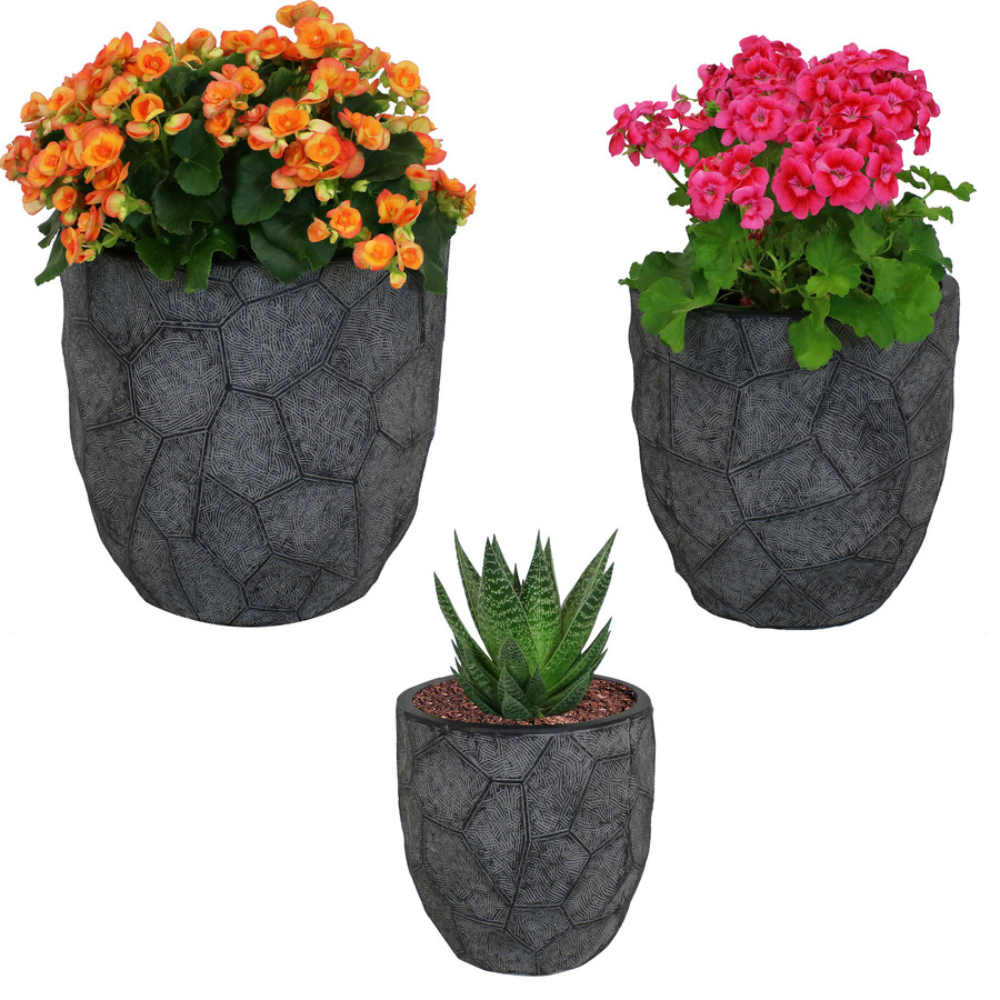 3-Piece Set with Plants Dark Gray