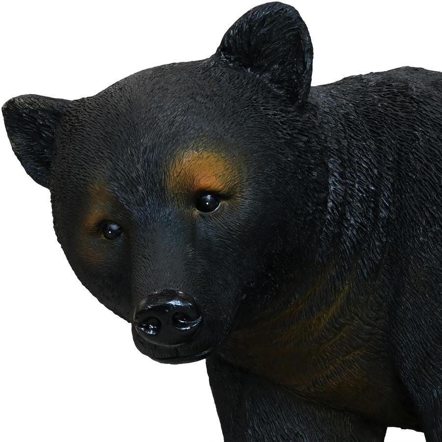 Closeup of Mama Bear
