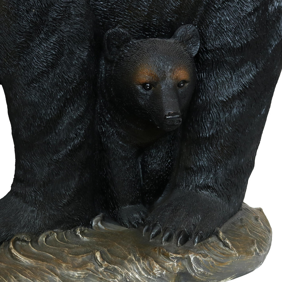 Closeup of Bear Cub