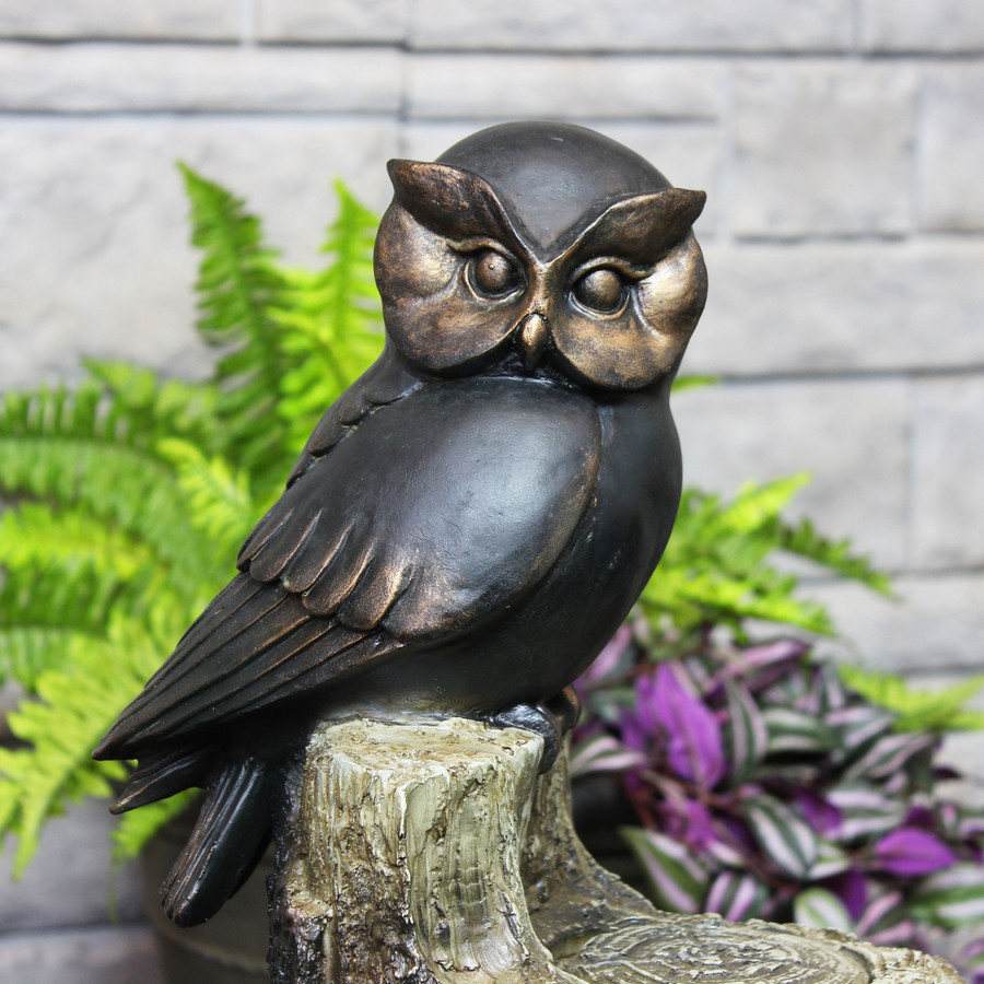 Closeup of Top Owl