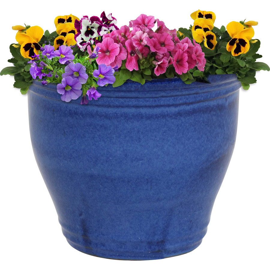 Sunnydaze Studio Ceramic Flower Pot Planter with Drainage Holes - High-Fired Glazed UV and Frost-Resistant Finish - Outdoor/Indoor Use