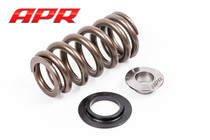 APR Valve Spring Kit, 20v 2.5 5cyl.