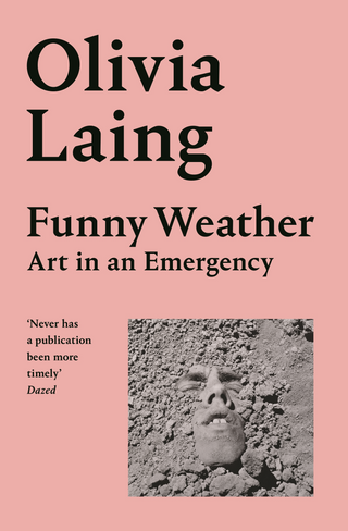 Funny Weather: Art in A Funny Weather