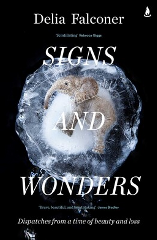 Signs and Wonders: Dispatches from a time of beauty and loss