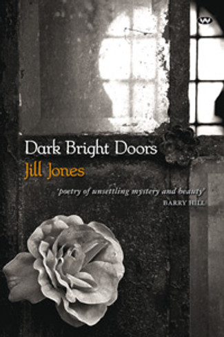 Dark Bright Doors