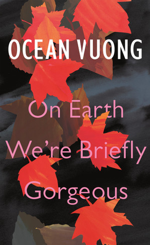 On Earth We're Briefly Gorgeous (Hardcover)