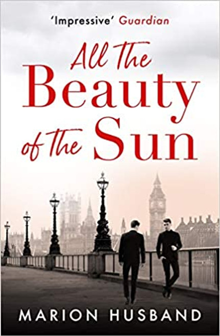 All the Beauty of the Sun  (The Boy I Love: Book Two)
