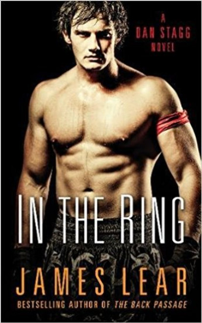 In The Ring (Dan Stagg Erotic Mystery #3)