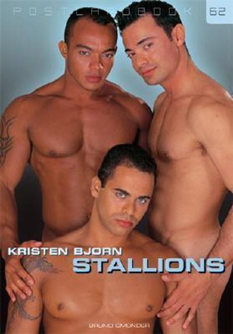 Postcard Book #62 : Stallions
