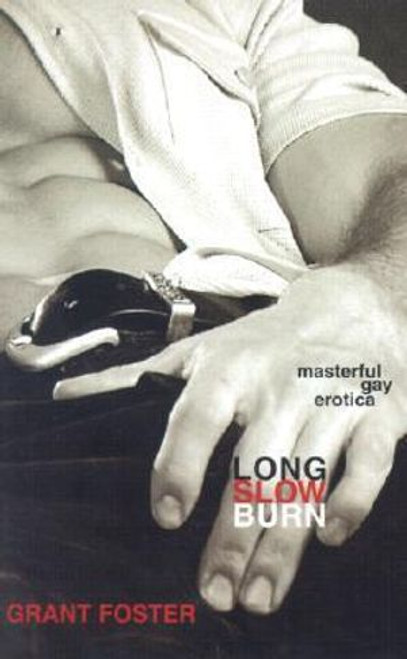 Long Slow Burn : Masterful Gay Erotica