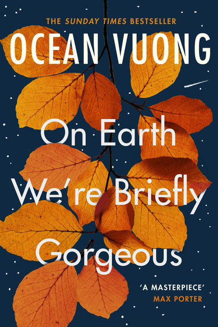 On Earth We're Briefly Gorgeous (paperback)