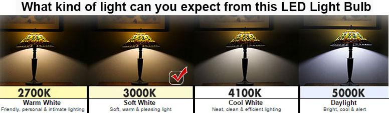 Led 5 Watt Dimmable 40w Replacement G25 Light Bulb 3000k Soft White 120 Volt