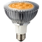 10 Watt High Output Amber LED PAR30 With Medium Base - FWC Wildlife Lighting Certified