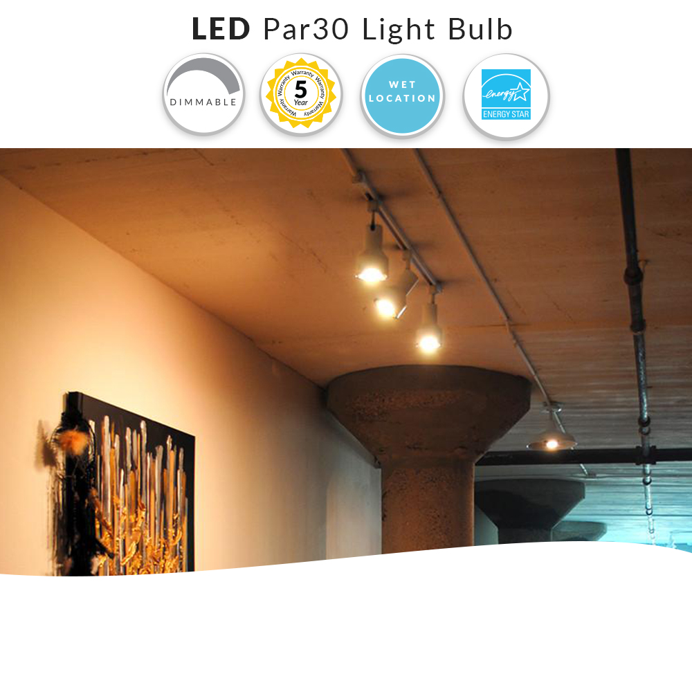 PAR30 LED Flood Bulb, 75W Replacement, 800 Lumens, Choose Your Color Temperature