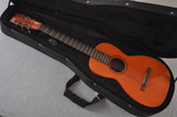 1895 Bay State Style E Parlor Guitar #15566 - Case