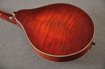 Eastman MD805/V Mandolin A Style Solid Adi Top Ebony Board - View 3