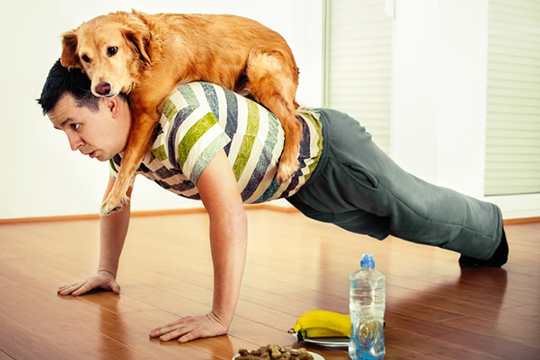Time to get fit - your dog and you!