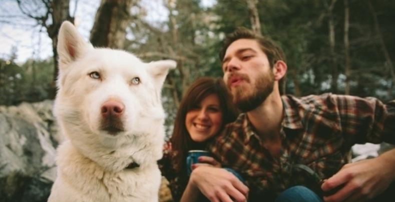 Do Dogs Get Jealous?