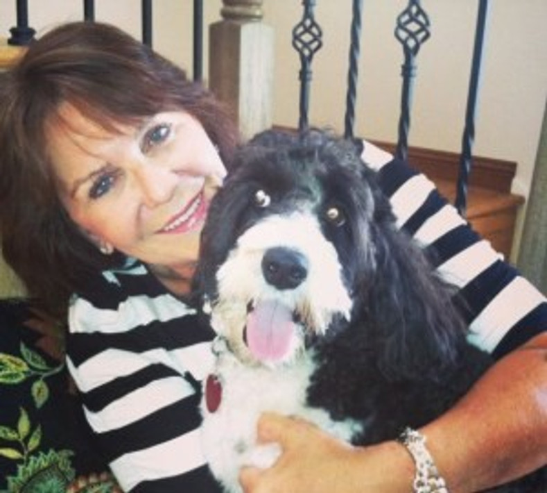 Entrepreneurial Spotlight:  Janet Folk with Dogtopia South Coast