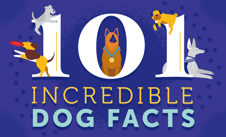 101 Incredible Dog Facts