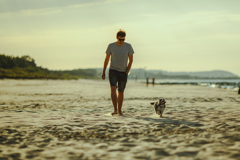 ​Health Benefits of Walking Your Dog