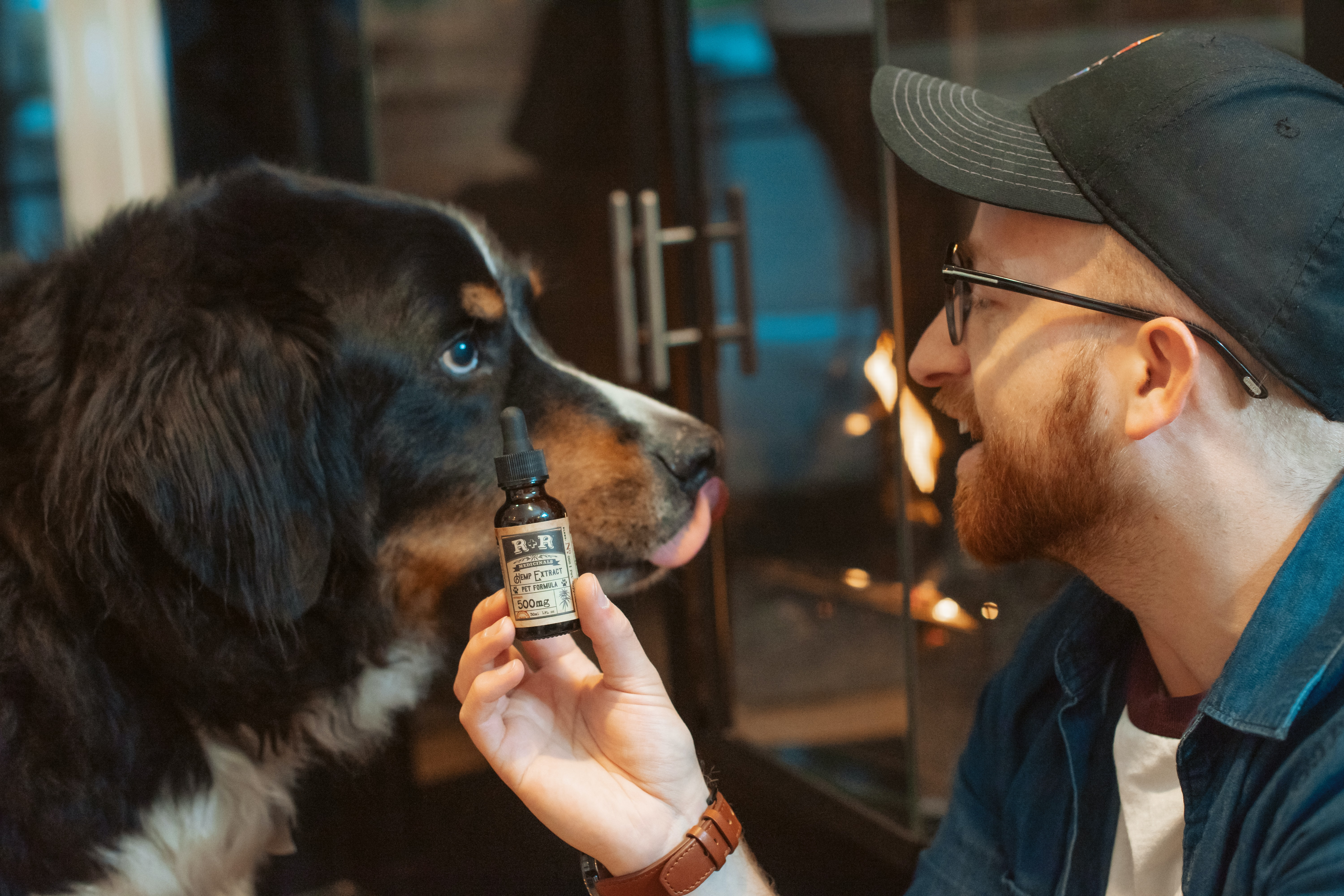 Health-conscious people use supplements or at least follow a strict balanced diet. But what about your dog? It's hard for your dog to get all the esse