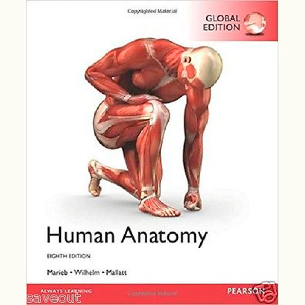 9781292156798 Human Anatomy 8th Edition Elaine N Marieb And