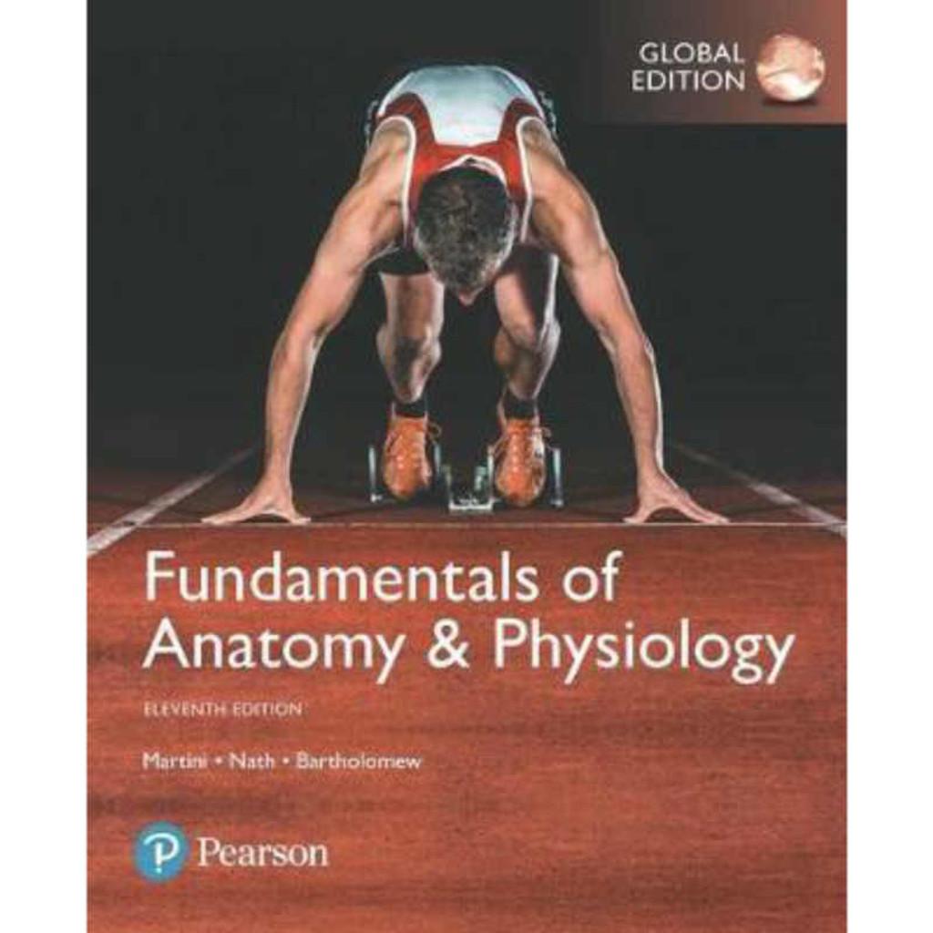 Fundamentals Of Anatomy Physiology 11th Edition Martini