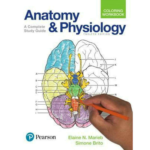 Anatomy and Physiology Coloring Workbook: A Complete Study Guide (12th Edition) Elaine N. Marieb and Simone Brito | 9780134459363