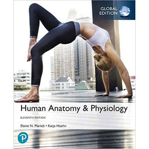 Human Anatomy and Physiology (11th Edition) Elaine N. Marieb and Katja Hoehn | 9781292260853