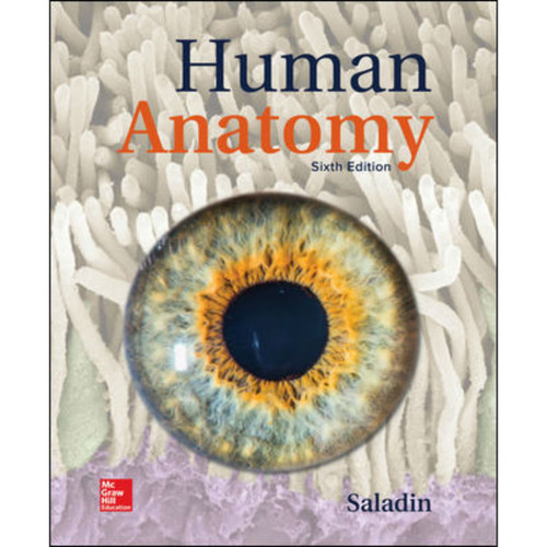 Human Anatomy (6th Edition) Kenneth Saladin | 9781260210262
