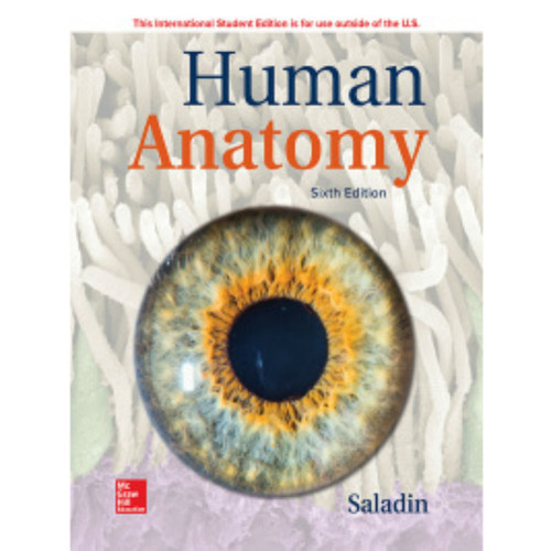 Human Anatomy (6th Edition) Kenneth Saladin | 9781260566000